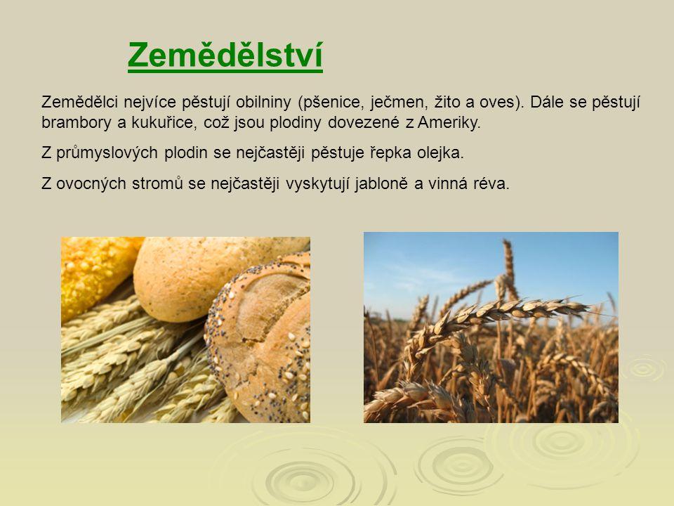 Zemědělci nejvíce pěstují obilniny (pšenice, ječmen, žito a oves). Dále se pěstují brambory a kukuřice, což jsou plodiny dovezené z Ameriky. Z průmysl