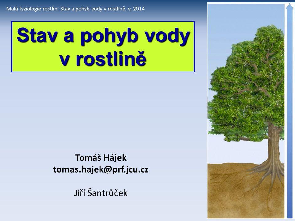 Stav a pohyb vody v rostlině Tomáš Hájek tomas.hajek@prf.jcu.cz Jiří Šantrůček