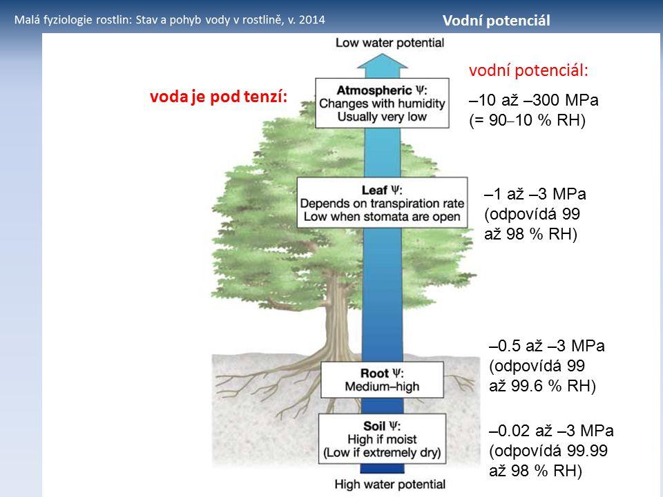 voda je pod tenzí: –10 až –300 MPa (= 90 – 10 % RH) –1 až –3 MPa (odpovídá 99 až 98 % RH) –0.5 až –3 MPa (odpovídá 99 až 99.6 % RH) –0.02 až –3 MPa (o