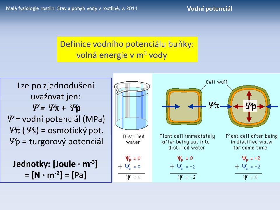Lze po zjednodušení uvažovat jen:  =  +  p  = vodní potenciál (MPa)  (  s) = osmotický pot.  p = turgorový potenciál Jednotky: [Joule · m -3