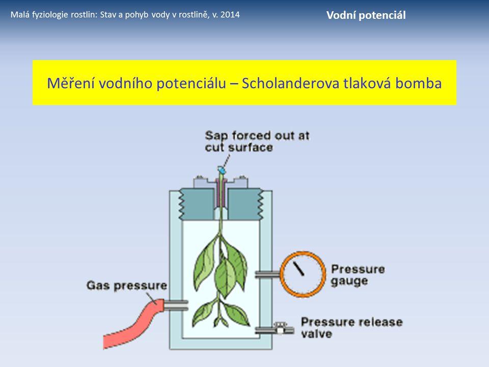 Měření vodního potenciálu – Scholanderova tlaková bomba Vodní potenciál
