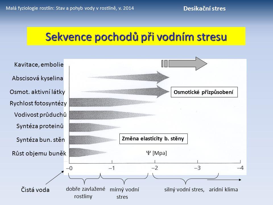 Sekvence pochodů při vodním stresu Růst objemu buněk Syntéza bun. stěn Syntéza proteinů Rychlost fotosyntézy Vodivost průduchů Osmot. aktivní látky Ab