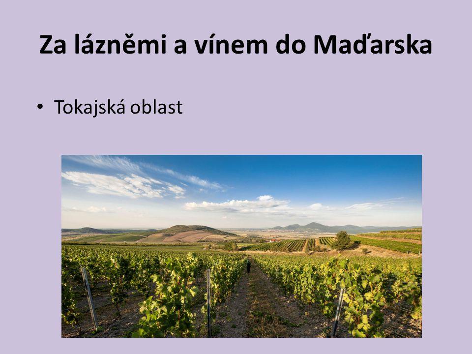 Za lázněmi a vínem do Maďarska Tokajská oblast