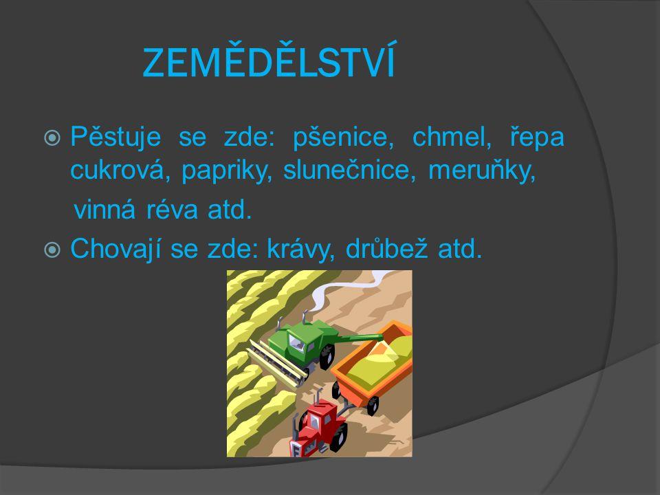 PRŮMYSL  Strojírenský, textilní, oděvní a cukrovarský průmysl, Zetor