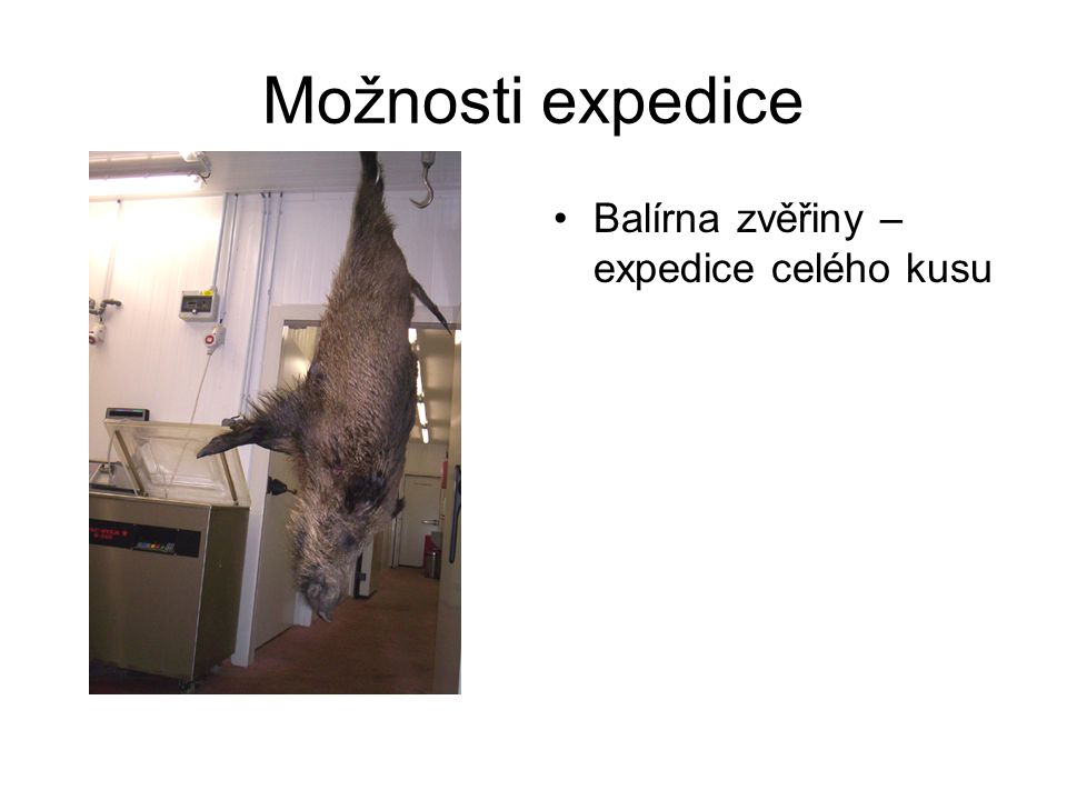 Možnosti expedice Balírna zvěřiny – expedice celého kusu