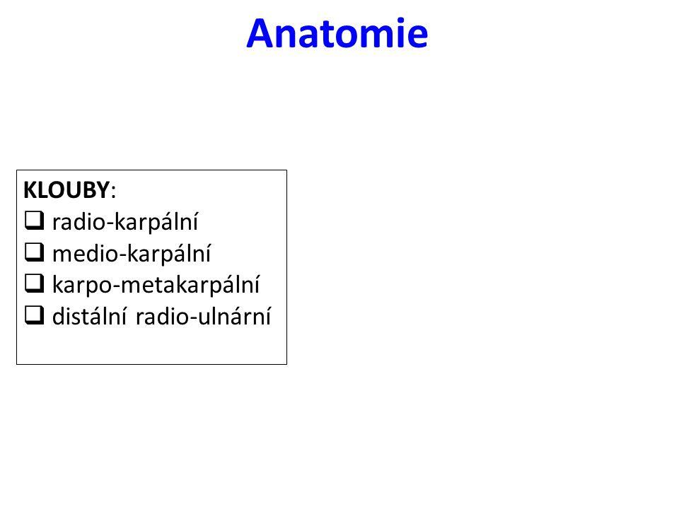 Anatomie KLOUBY:  radio-karpální  medio-karpální  karpo-metakarpální  distální radio-ulnární