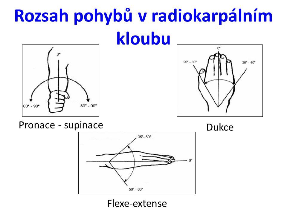 Rozsah pohybů v radiokarpálním kloubu Flexe-extense Dukce Pronace - supinace