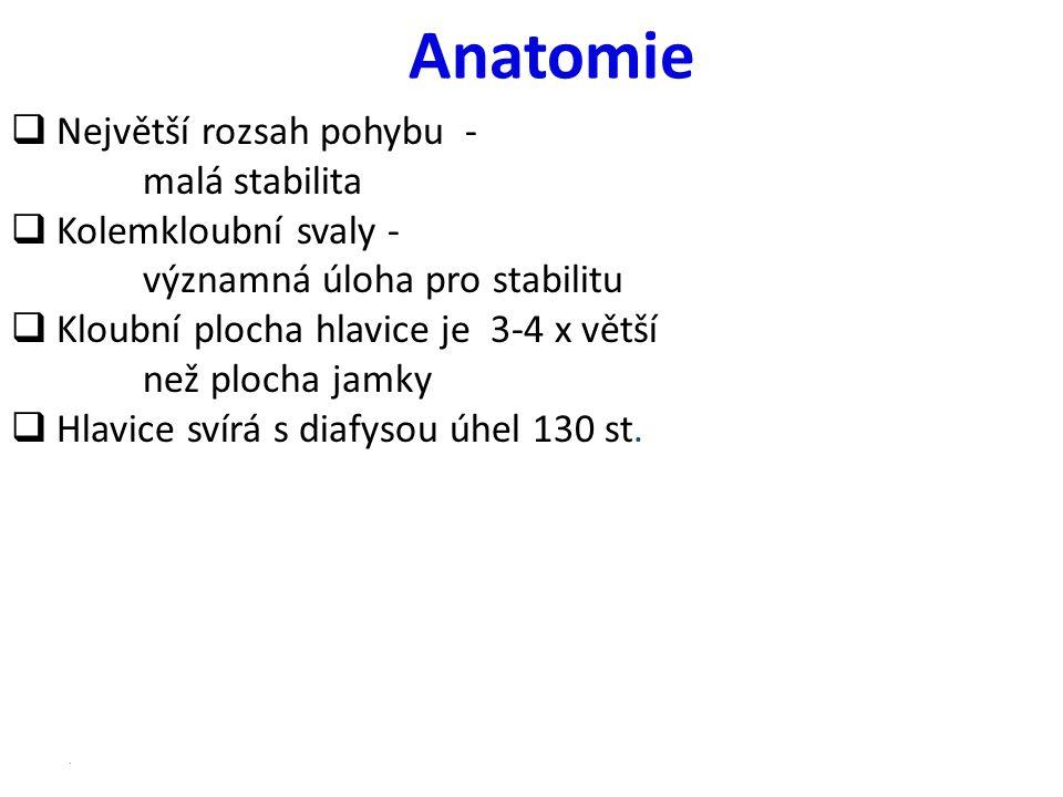 Anatomie  Největší rozsah pohybu - malá stabilita  Kolemkloubní svaly - významná úloha pro stabilitu  Kloubní plocha hlavice je 3-4 x větší než plo