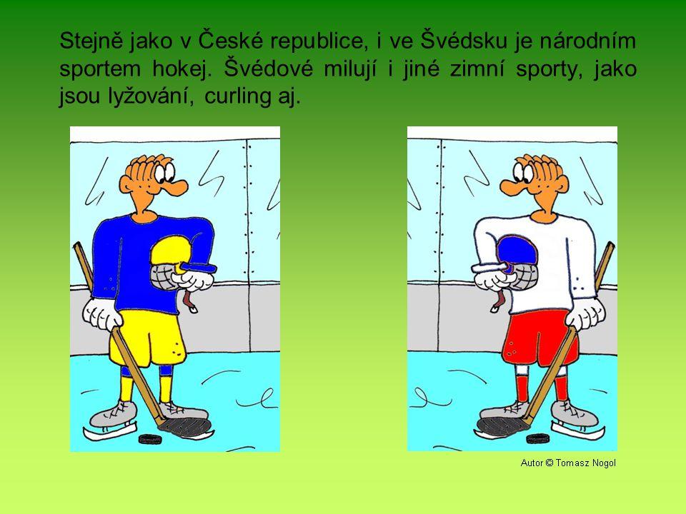 Stejně jako v České republice, i ve Švédsku je národním sportem hokej.