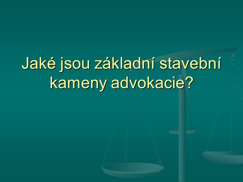 Jaké jsou základní stavební kameny advokacie?