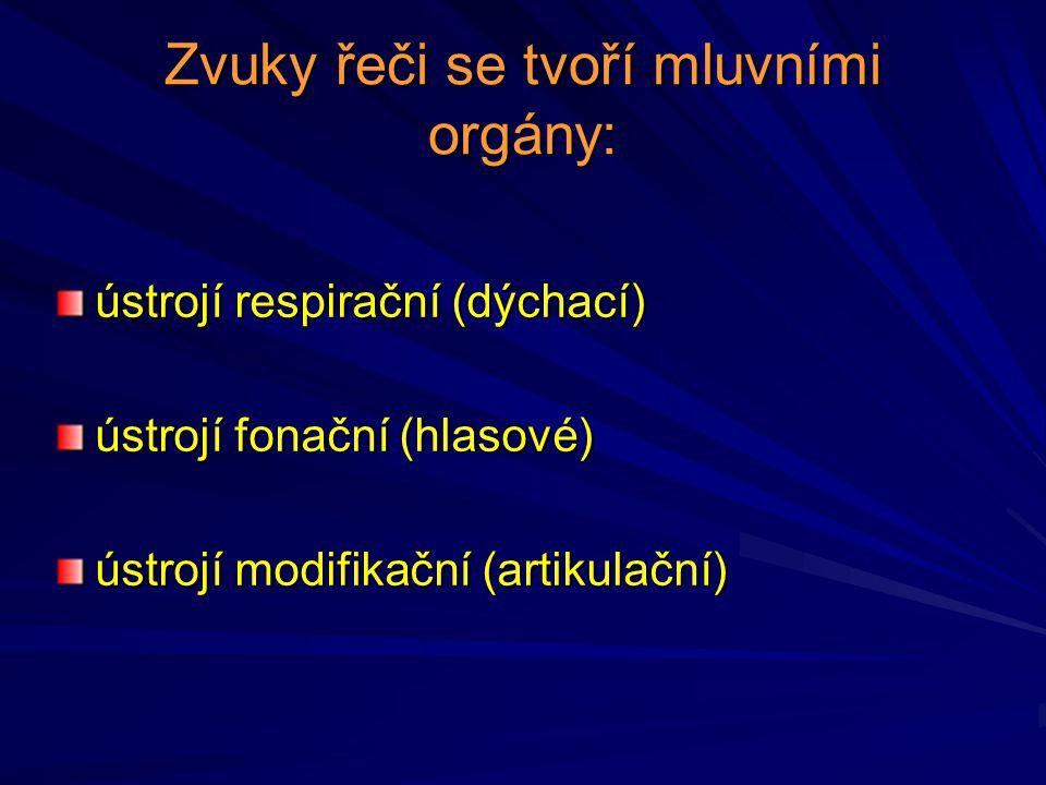 Zvuky řeči se tvoří mluvními orgány: ústrojí respirační (dýchací) ústrojí fonační (hlasové) ústrojí modifikační (artikulační)