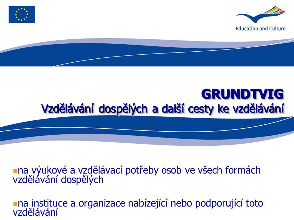 GRUNDTVIG Vzdělávání dospělých a další cesty ke vzdělávání na výukové a vzdělávací potřeby osob ve všech formách vzdělávání dospělých na instituce a organizace nabízející nebo podporující toto vzdělávání