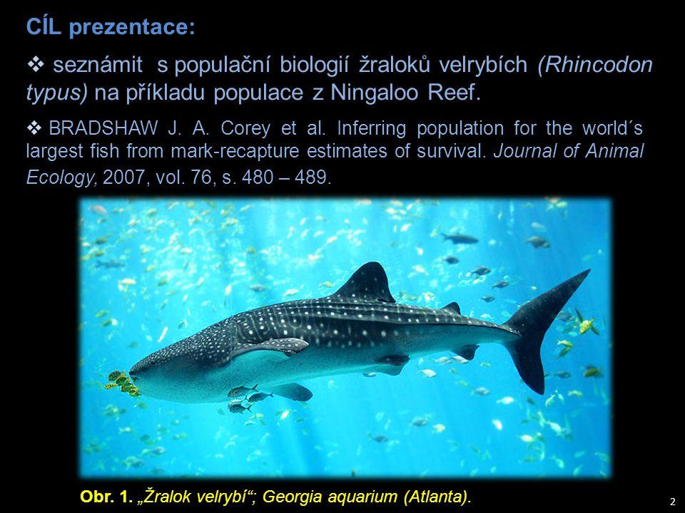 "Obr. 1. ""Žralok velrybí""; Georgia aquarium (Atlanta). CÍL prezentace:  BRADSHAW J. A. Corey et al. Inferring population for the world´s largest fish"