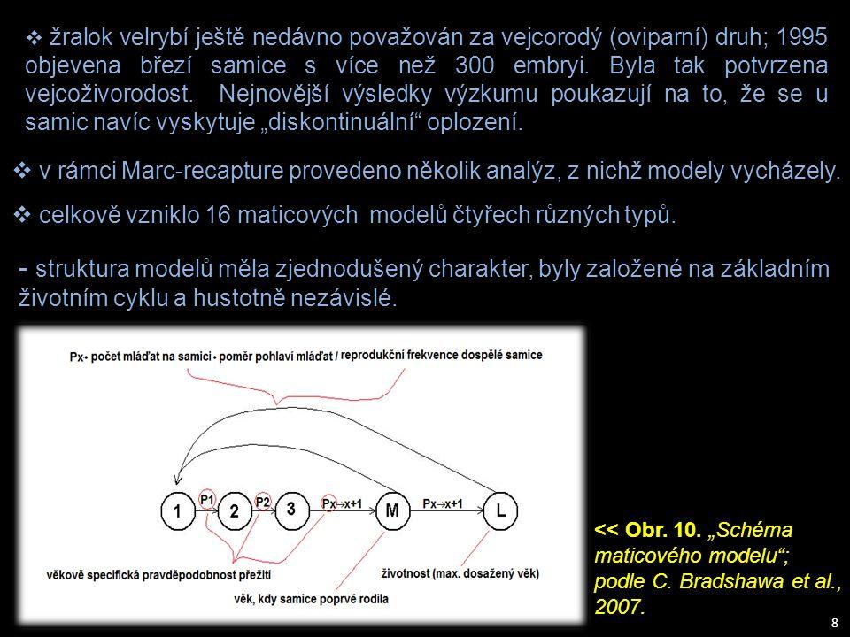 8  v rámci Marc-recapture provedeno několik analýz, z nichž modely vycházely.  celkově vzniklo 16 maticových modelů čtyřech různých typů. - struktur