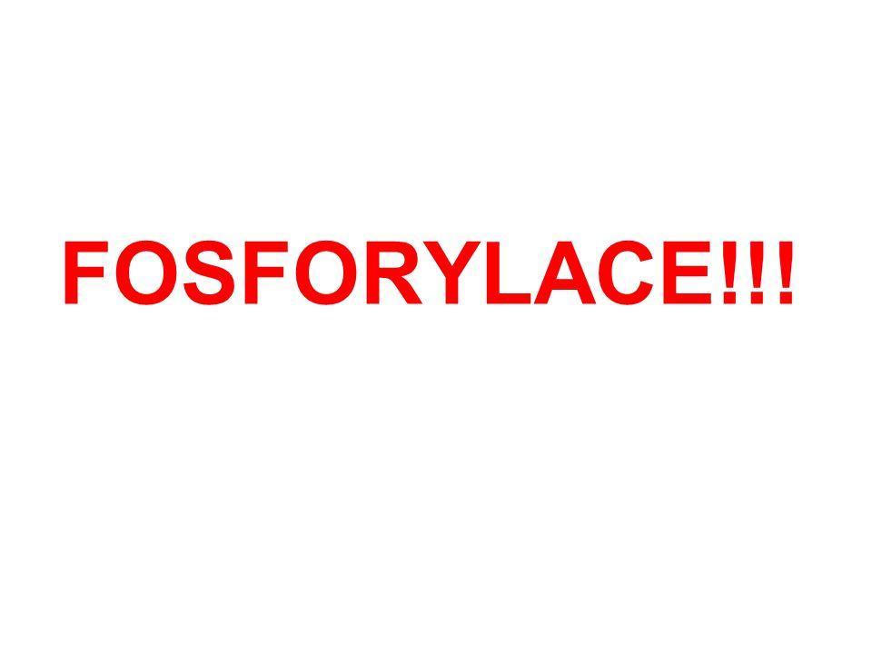 FOSFORYLACE!!!