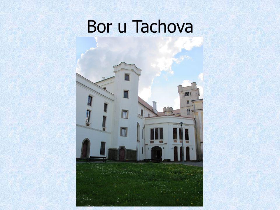 Bor u Tachova