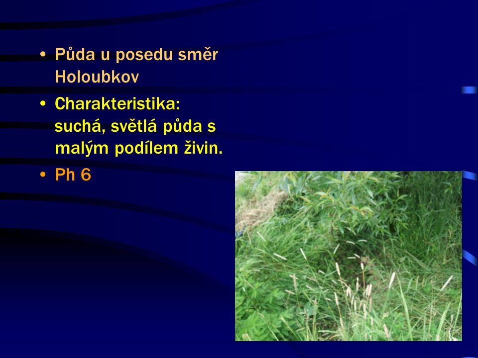 Půda u posedu směr Holoubkov Charakteristika: suchá, světlá půda s malým podílem živin. Ph 6
