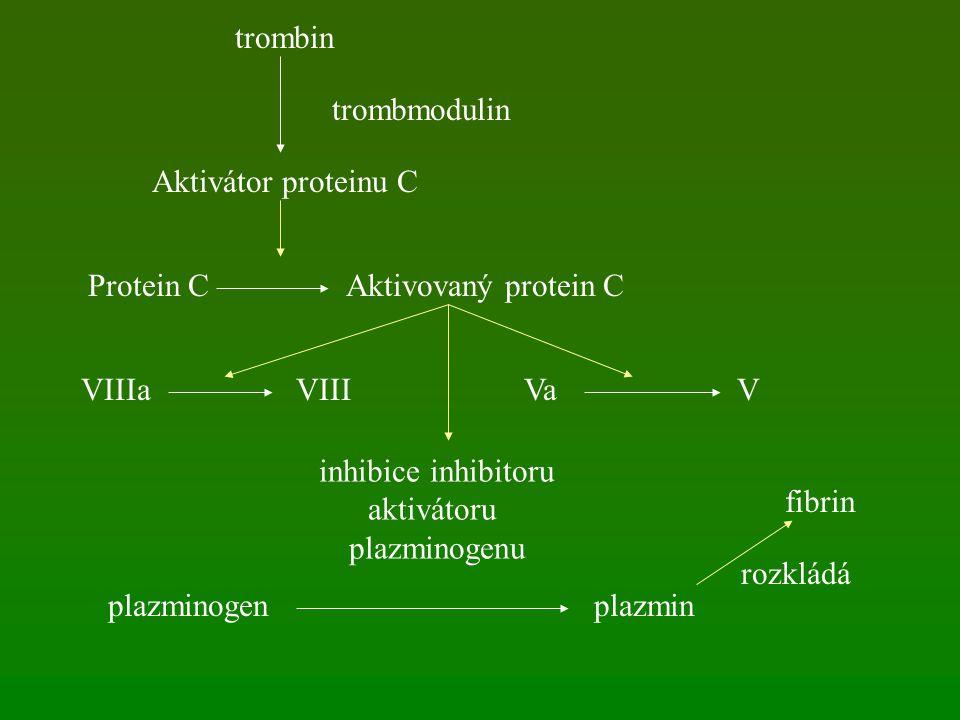 trombin Aktivátor proteinu C trombmodulin Protein CAktivovaný protein C VIIIaVIIIVaV inhibice inhibitoru aktivátoru plazminogenu plazminogenplazmin fibrin rozkládá