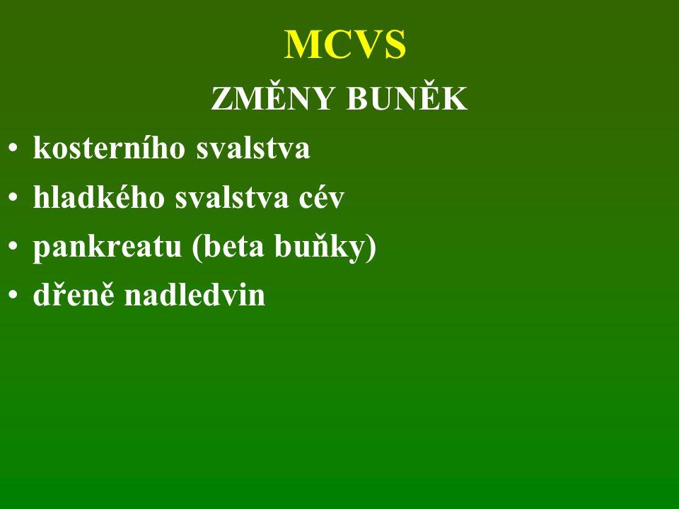 MCVS ZMĚNY BUNĚK kosterního svalstva hladkého svalstva cév pankreatu (beta buňky) dřeně nadledvin