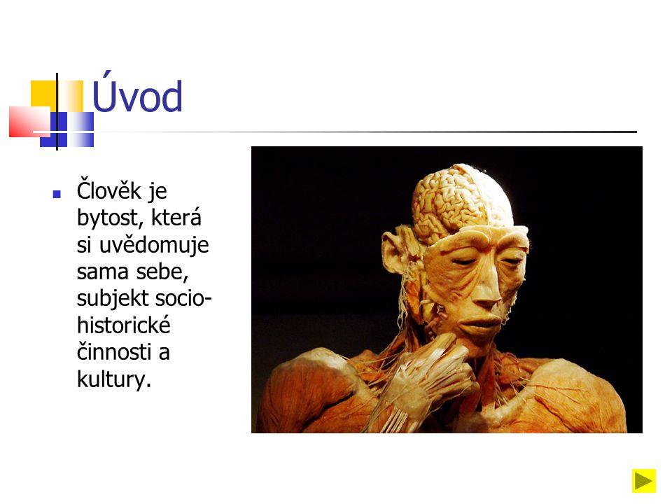 Úvod Člověk je bytost, která si uvědomuje sama sebe, subjekt socio- historické činnosti a kultury.
