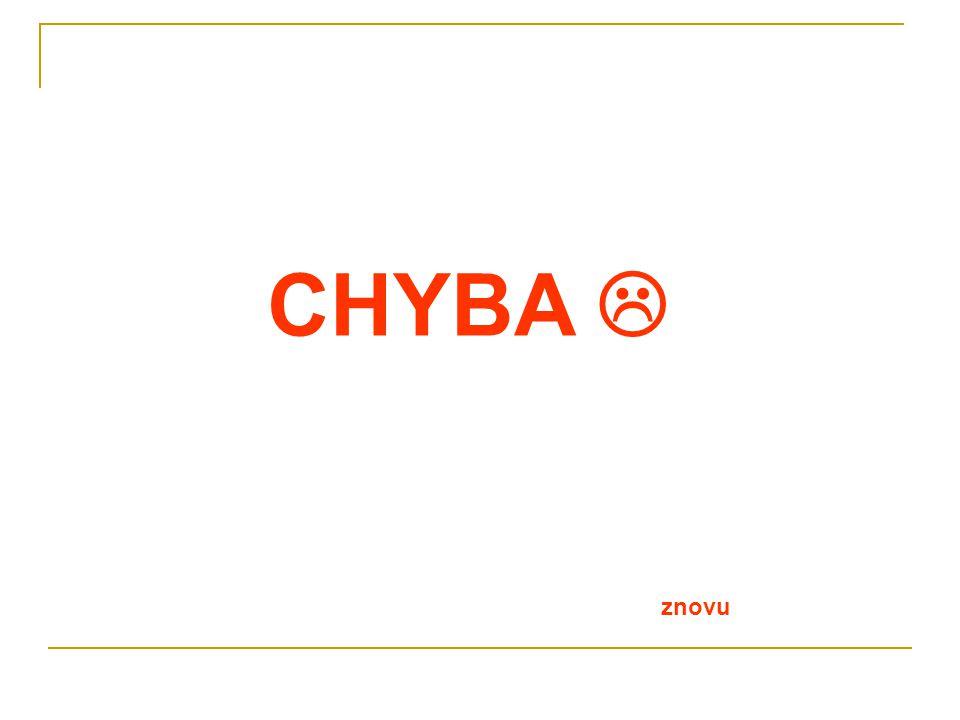 CHYBA 