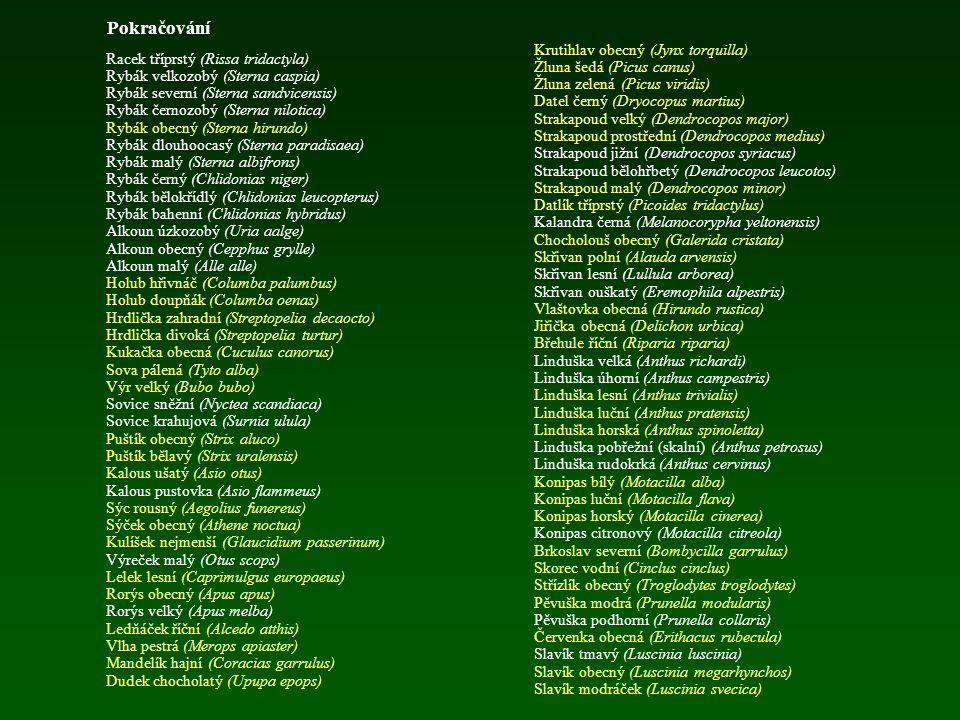 Pokračování Lyska černá (Fulica atra) Slípka zelenonohá (Gallinula chloropus) Slípka modrá (Porphyrio porphyrio) Jeřáb popelavý (Grus grus) Drop velký