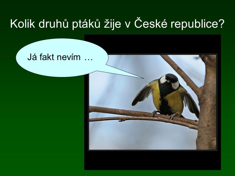 Ornitologické organizace a instituce organizace Česká společnost ornitologická (ČSO) + regionální pobočky (např. Slezská ornitologická společnost), čl