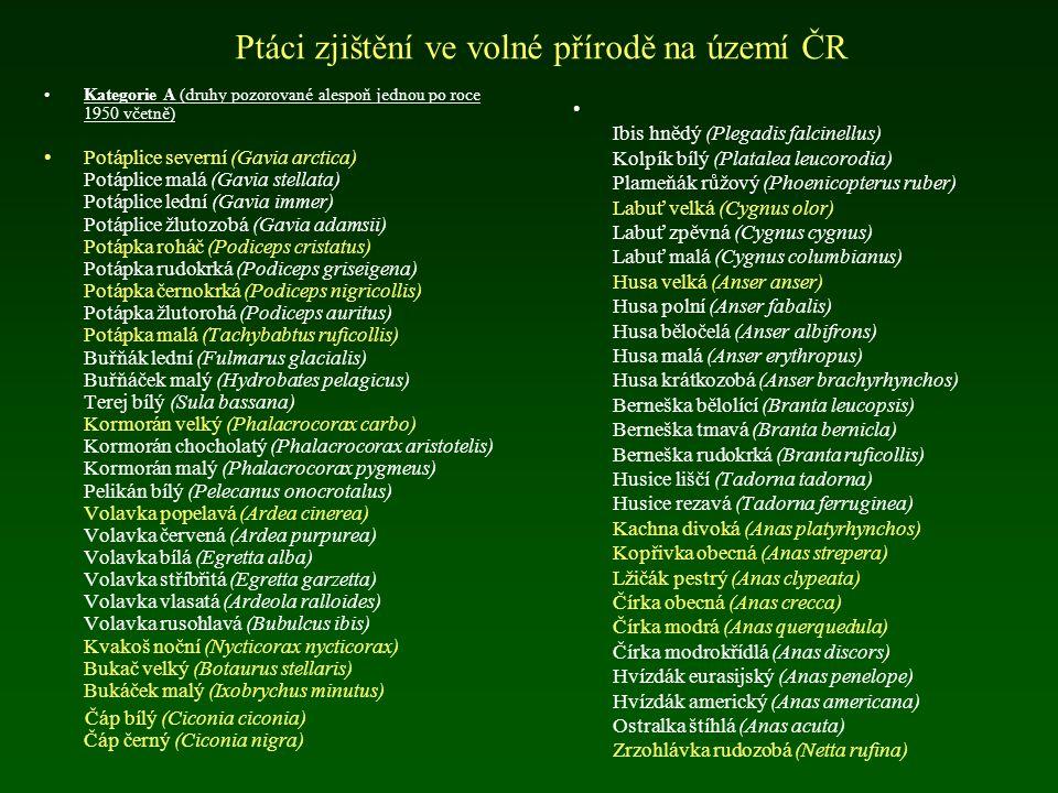 Přehled ptáků České republiky bahňáci (83, 22) měkkozobí (5, 5) kukačky (1, 1) sovy (12, 11) lelkové (1, 1) svišťouni (2, 1) srostloprstí (4, 4) šplha