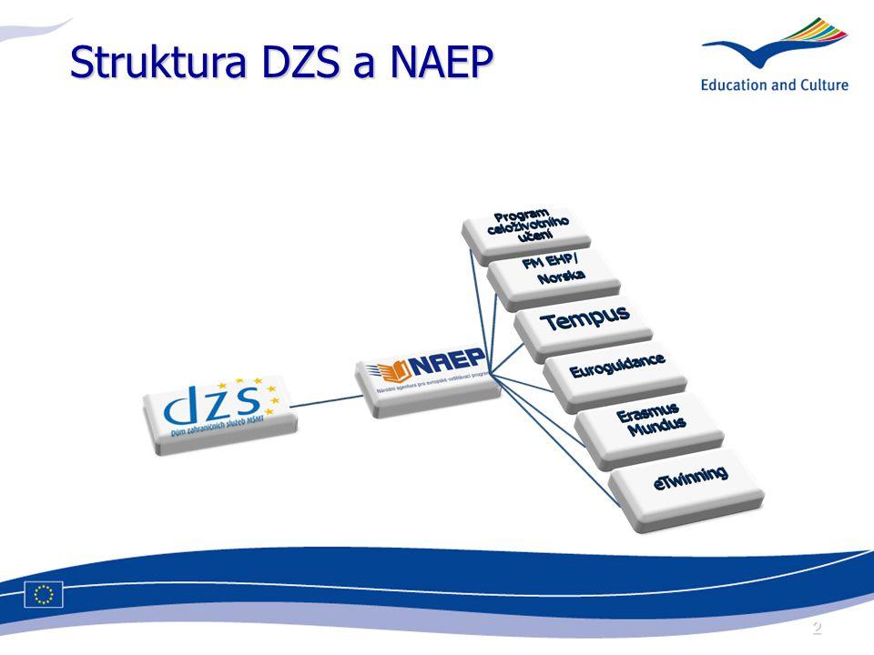 2 Struktura DZS a NAEP