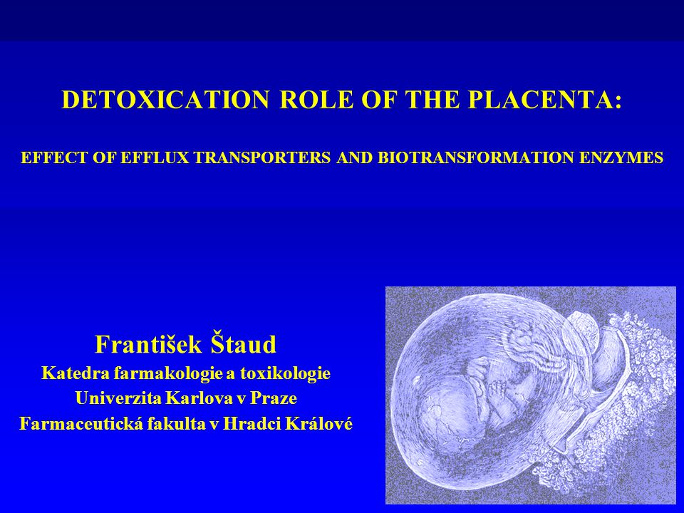 DETOXICATION ROLE OF THE PLACENTA: EFFECT OF EFFLUX TRANSPORTERS AND BIOTRANSFORMATION ENZYMES František Štaud Katedra farmakologie a toxikologie Univerzita Karlova v Praze Farmaceutická fakulta v Hradci Králové