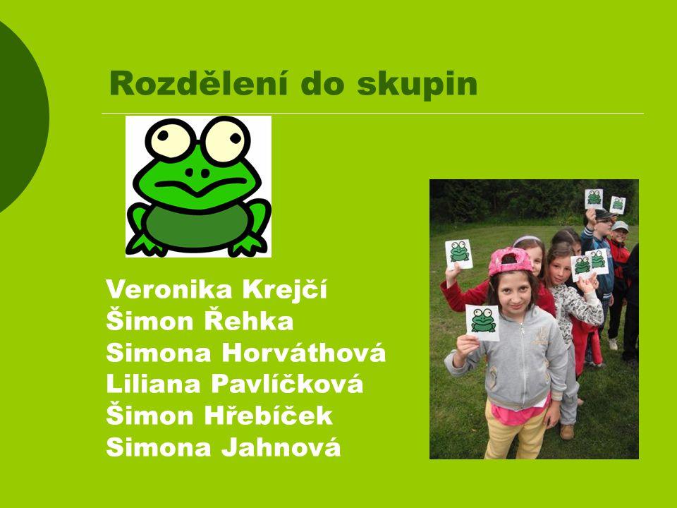 Rozdělení do skupin Veronika Krejčí Šimon Řehka Simona Horváthová Liliana Pavlíčková Šimon Hřebíček Simona Jahnová
