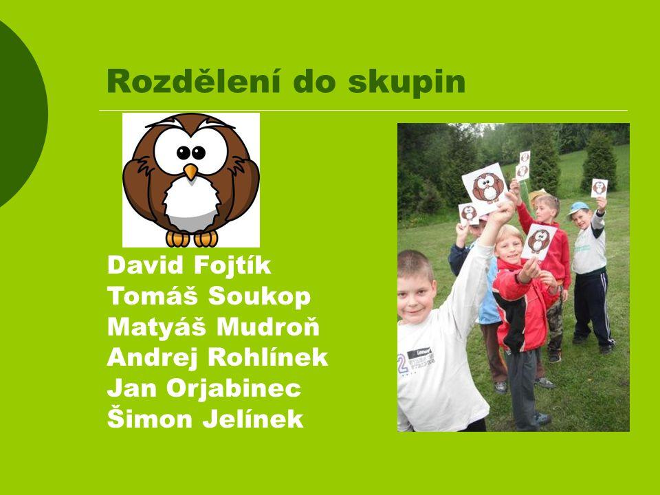 Rozdělení do skupin David Fojtík Tomáš Soukop Matyáš Mudroň Andrej Rohlínek Jan Orjabinec Šimon Jelínek