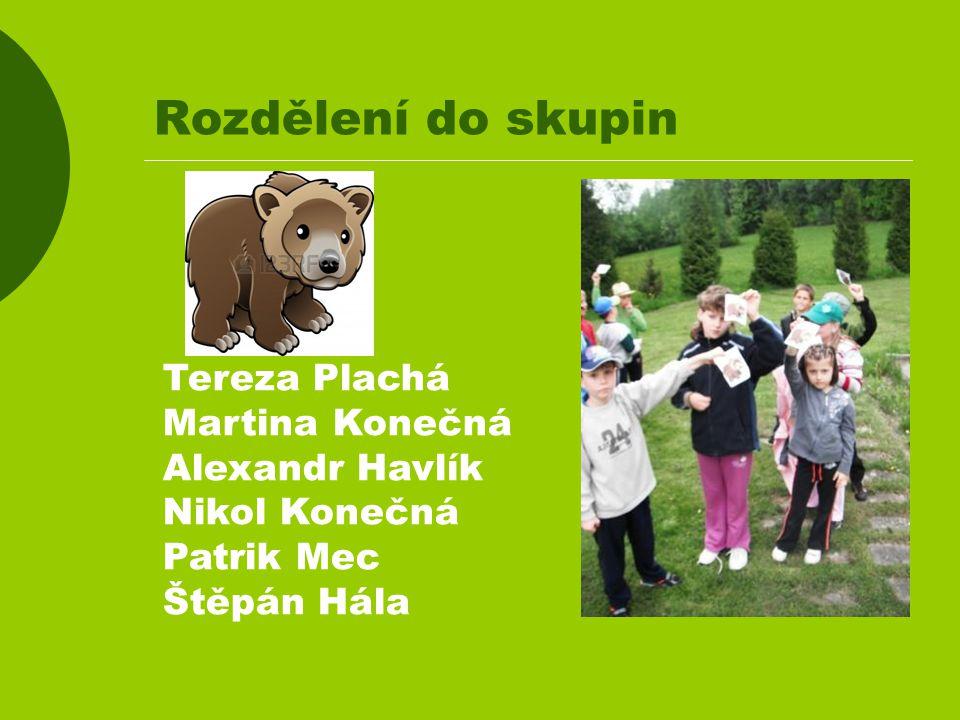 Rozdělení do skupin Tereza Plachá Martina Konečná Alexandr Havlík Nikol Konečná Patrik Mec Štěpán Hála