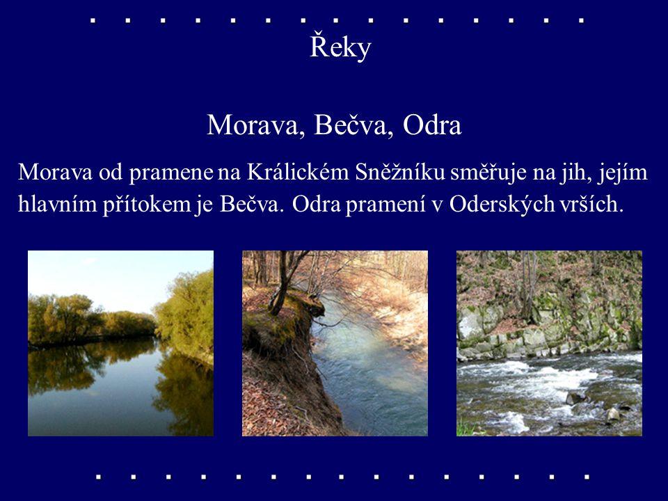 Řeky Morava, Bečva, Odra Morava od pramene na Králickém Sněžníku směřuje na jih, jejím hlavním přítokem je Bečva.