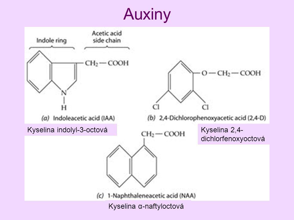 Auxiny Kyselina indolyl-3-octová Kyselina α-naftyloctová Kyselina 2,4- dichlorfenoxyoctová