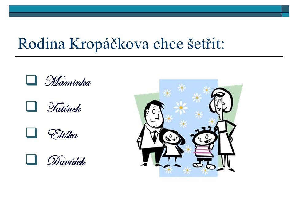 Rodina Kropáčkova chce šetřit:  Maminka  Tatínek  Eliška  Davídek