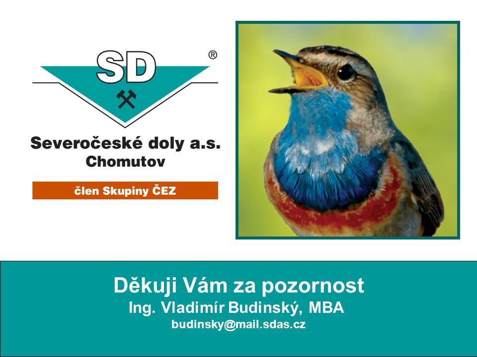 Thank You for Your Attention budinsky@mail.sdas.cz Děkuji Vám za pozornost Ing. Vladimír Budinský, MBA budinsky@mail.sdas.cz