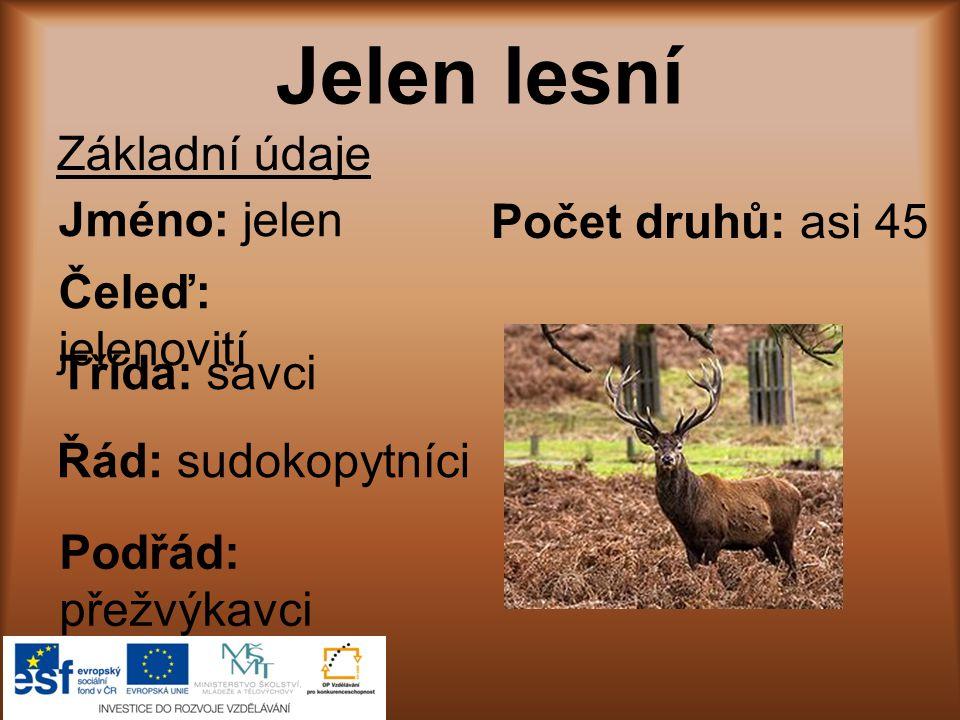 Počet mláďat: 1 – 2 Hmotnost: samci 160 – 240 kg samice 120 – 170 kg Rozšíření: obývají prakticky celou Evropu Potrava: tráva, kůra, větvičky, listy, mladé výhonky