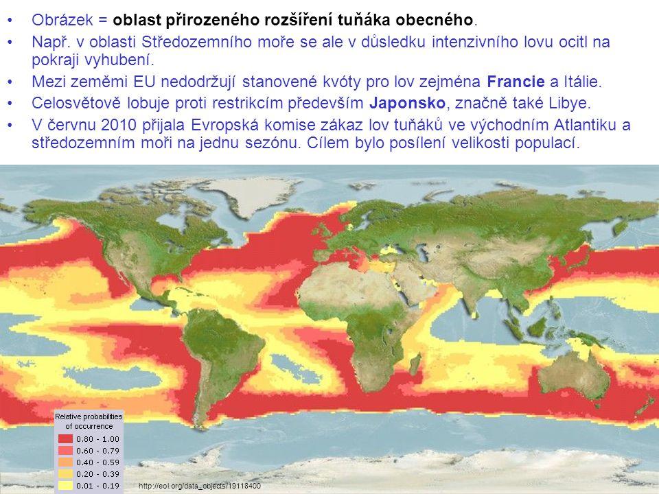Obrázek = oblast přirozeného rozšíření tuňáka obecného.