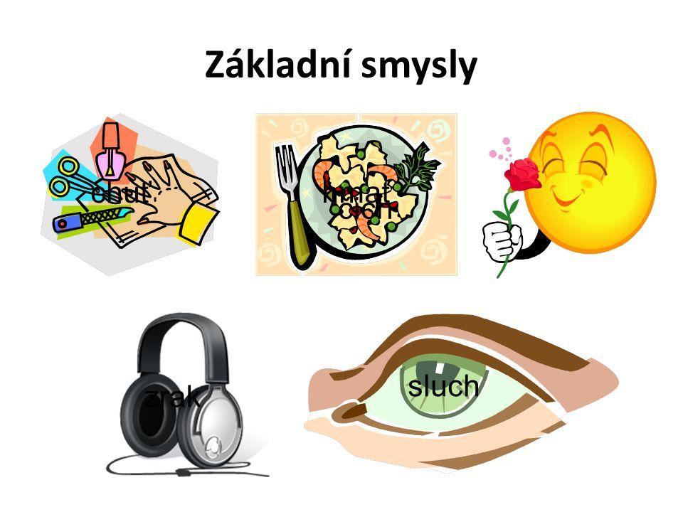 Základní smysly hmatchuť čich sluch zrak