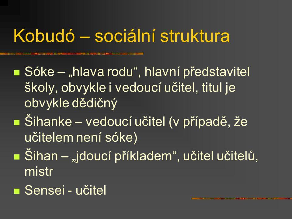 Kobudó – sociální struktura Charakteristiky sociálních interakcí Pevná formální struktura Převaha vertikálních interakcí Dlouhodobé (celoživotní) trvá