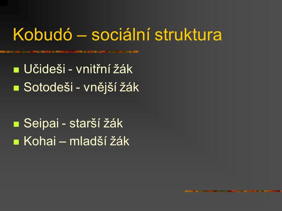 """Kobudó – sociální struktura Sóke – """"hlava rodu , hlavní představitel školy, obvykle i vedoucí učitel, titul je obvykle dědičný Šihanke – vedoucí učitel (v případě, že učitelem není sóke) Šihan – """"jdoucí příkladem , učitel učitelů, mistr Sensei - učitel"""