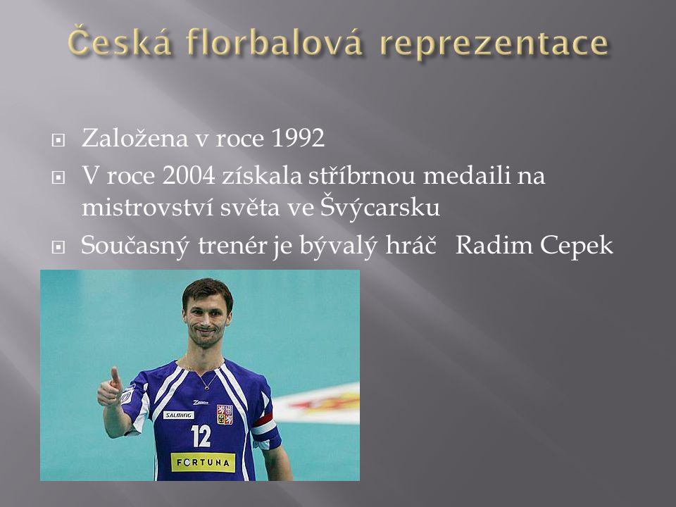  Založena v roce 1992  V roce 2004 získala stříbrnou medaili na mistrovství světa ve Švýcarsku  Současný trenér je bývalý hráč Radim Cepek