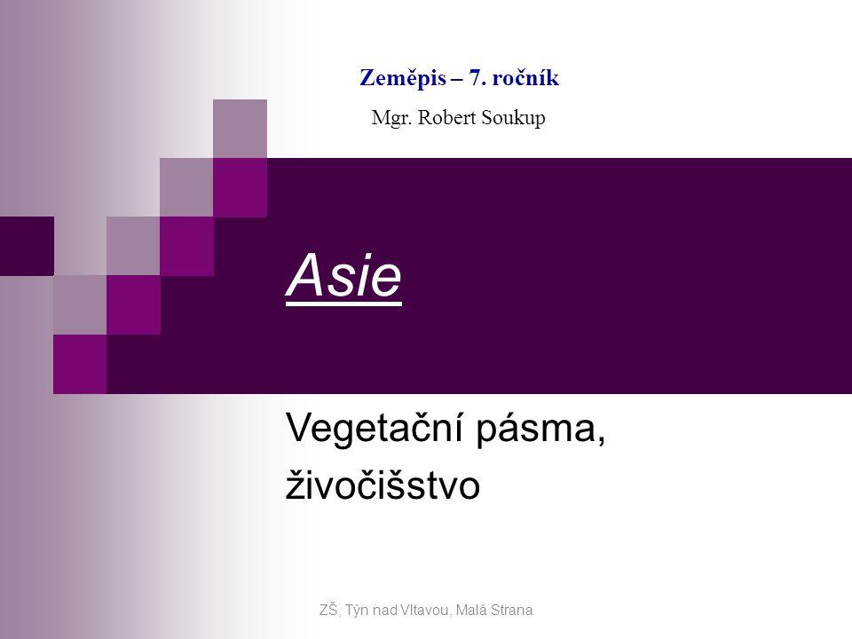 Asie Vegetační pásma, živočišstvo Zeměpis – 7. ročník Mgr. Robert Soukup ZŠ, Týn nad Vltavou, Malá Strana