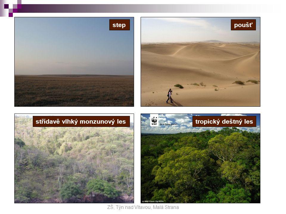 Opakování Propojte co k sobě patří… ZŠ, Týn nad Vltavou, Malá Strana Tundra Tajga Mrazová poušť Tropický deštný les Poušť
