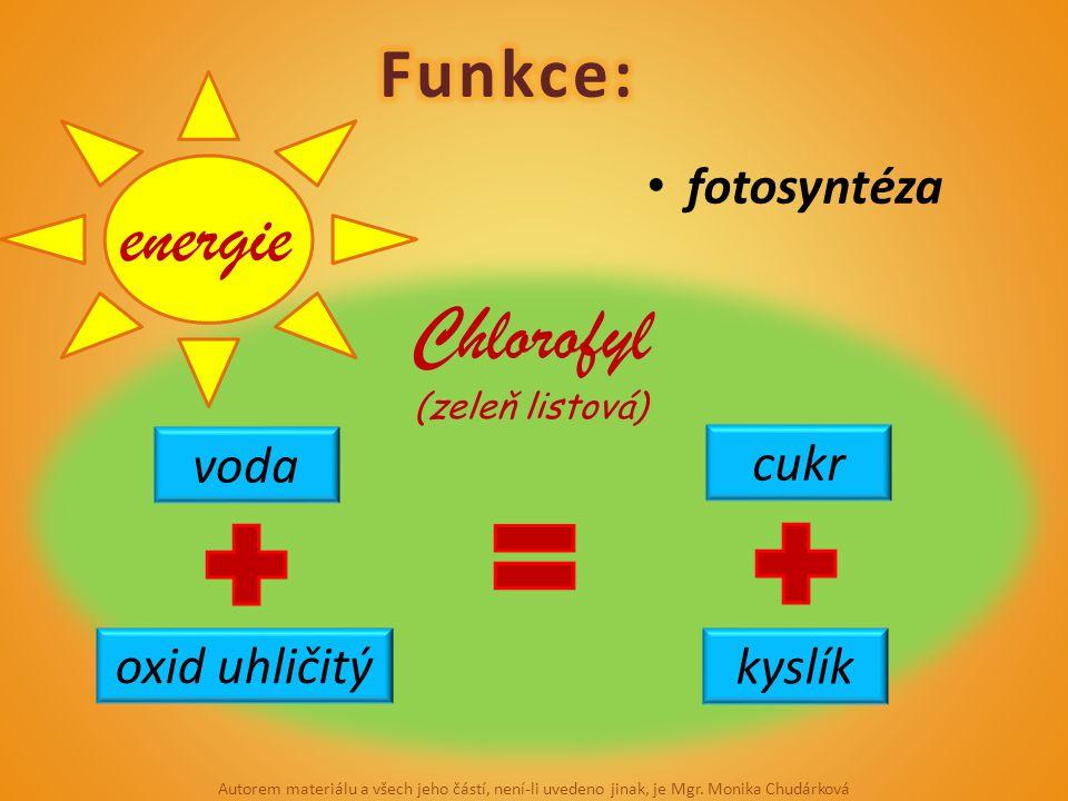 fotosyntéza voda oxid uhličitý cukr kyslík Chlorofyl (zeleň listová) energie Autorem materiálu a všech jeho částí, není-li uvedeno jinak, je Mgr. Moni