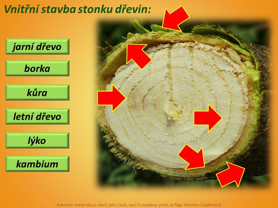 jarní dřevo kůra kambium borka letní dřevo lýko Vnitřní stavba stonku dřevin: Autorem materiálu a všech jeho částí, není-li uvedeno jinak, je Mgr. Mon