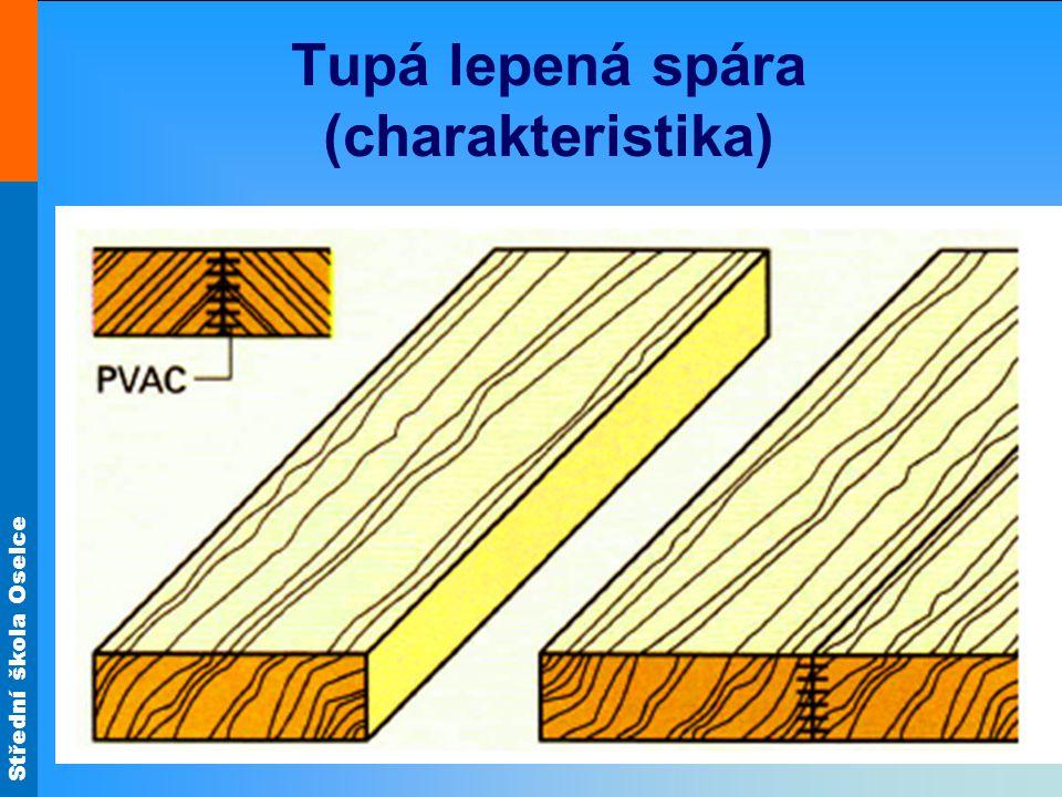 Střední škola Oselce Tupá lepená spára (charakteristika)