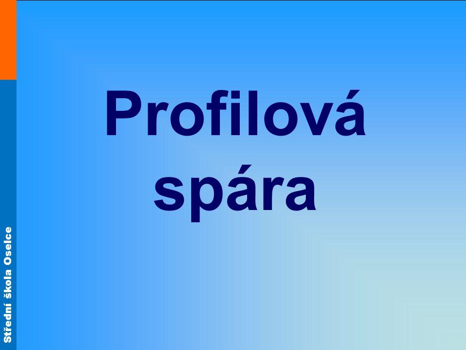 Střední škola Oselce Profilová spára