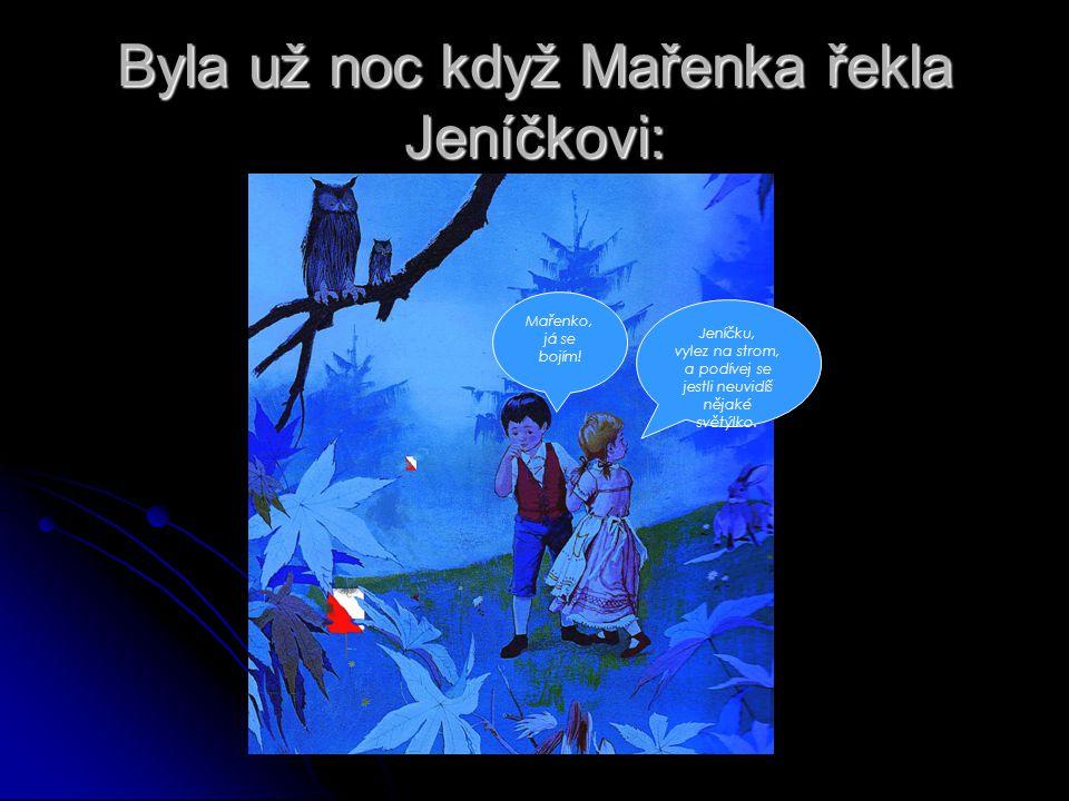 Byla už noc když Mařenka řekla Jeníčkovi: Jeníčku, vylez na strom, a podívej se jestli neuvidíš nějaké světýlko.